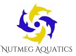 Nutmeg Aquatics