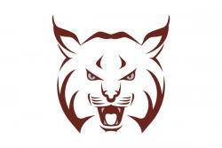 Beaver Area School District