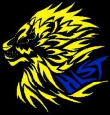 Helena Lions Swim Team