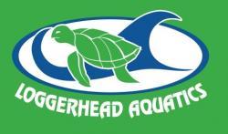 Loggerhead Aquatics